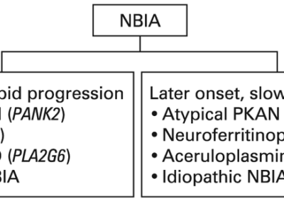 NBIA - Categorisation-of-neurodegeneration-with-brain-iron-accumulation-NBIA-subtypes-and