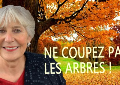 cover-ne-coupez-pas-les-arbres---christina-meissner