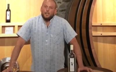 Le vin suisse en danger ?